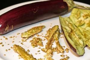 Как купить семена баклажана и не разочароваться