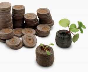 Торфяные таблетки — бюджетное решение для богатого урожая